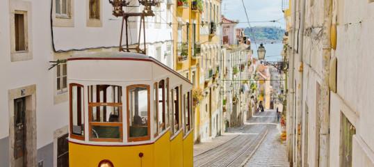 Learn Portuguese Online (Brazilian) - (Business)